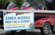 Zebra mussels still a major threat to local waters