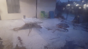 Hail covers the Murphy area in a blanket of white.