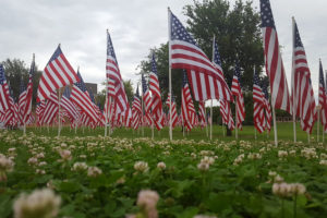 The Exchange Club of Murphy displayed 100 flags for Memorial Day.