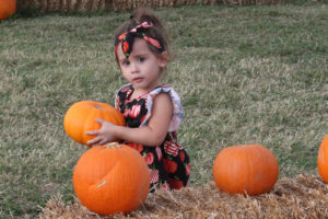 Picking out the perfect Halloween pumpkin at the First United Methodist Church of Wylie pumpkin patch is Makenna Ezagui, 2-year-old daughter of Josh and Julie Ezagui of Murphy.