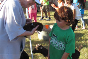 Hudson Cornell is a little bit hesintent to hold a guinea pig during the Boggess Elementary eighth annual PTA Fall Carnival.