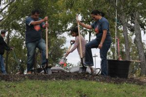 Making a family outing for Arbor Day at Murphy Central Park Nov. 5 were Raj Jangade, Sailee Jangade and Neeta Joshi.