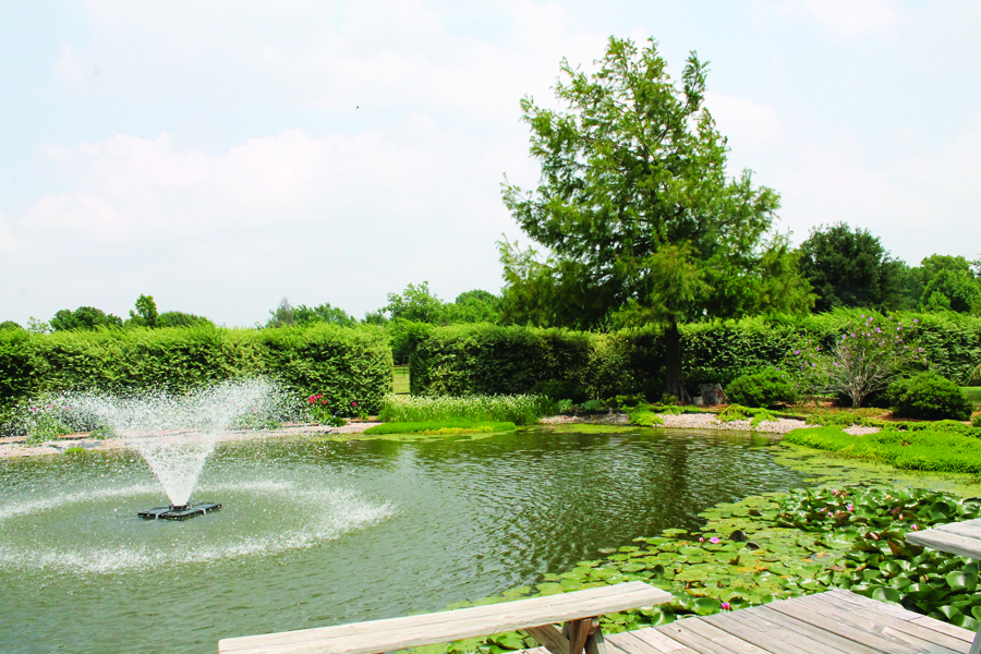 Wylie backyard pond featured on tour