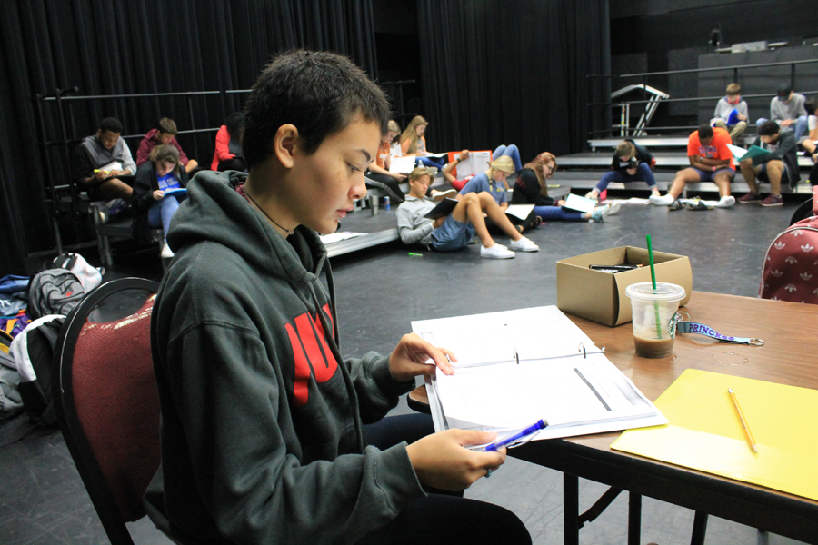 WHS theatre spends months preparing shows