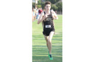 Wilcox runs to first in district meet