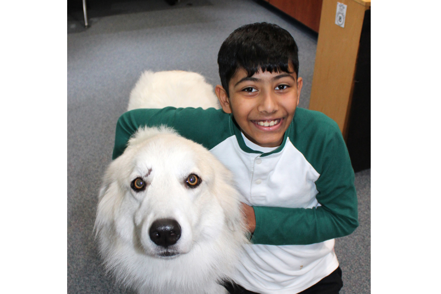 Four-legged hound roams halls at Hunt