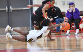 Lady Panthers advance after strong playoff performance